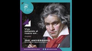 Beethoven 250° Tutorial de violín inicial- Por Amparo G. Rabell