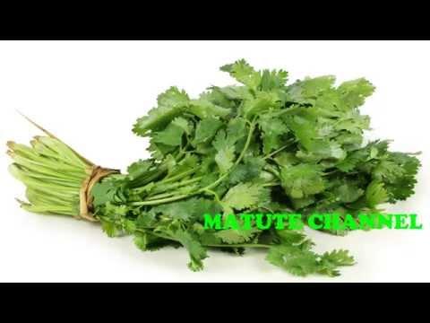 Secretos del cilantro