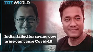 In India, 2 men are in jail for saying cow urine can't cure Covid-19