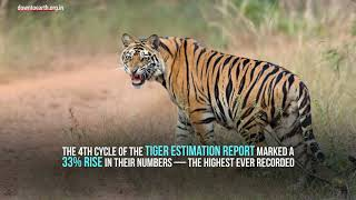 Tiger Census 2018: Explained in two minutes