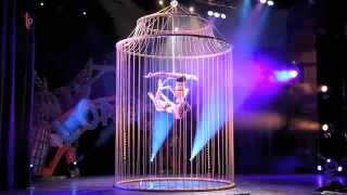The Aerial Golden Cage Thumbnail