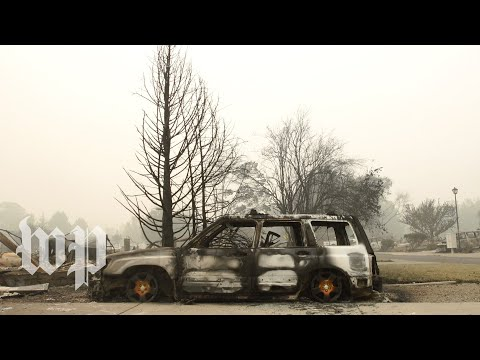 'No home to go to': Oregon residents devastated by historic blazes
