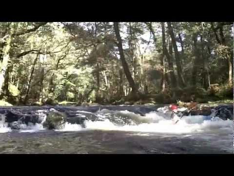 River Walkham/Tavy 14/10/2012