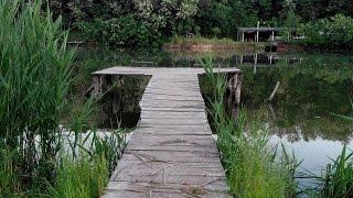 Место для рыбалки - платный ставок в с. Липовец, Кагарлыкский район