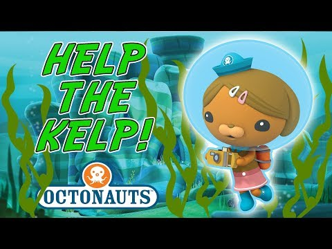 Octonauts - Help the Kelp | Strong Currents