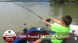 بالفيديو| طفل كندي يصطاد سمكة عملاقة تزن 272 كيلوجراما