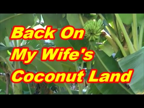 Back On My Wife's Coconut Land Camiguin Island, Philippines
