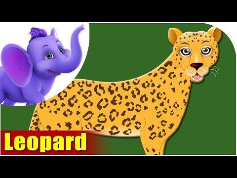 Leopard - Animal Rhymes in Ultra HD (4K)