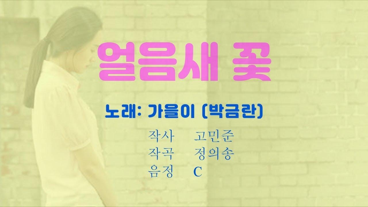가을이(박금란)- 얼음새꽃 원음노래방 (C→B→B♭→A→A♭)