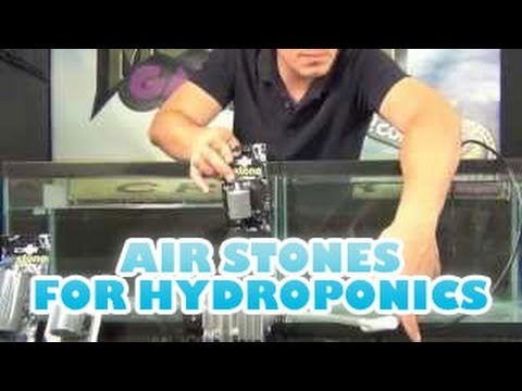 TEST- Air Stones For Hydroponics DWC Deep Water Culture Indoor Garden  Oxygen Diffusion