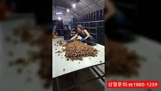 달팽이 전문사육용 (중고) 양식통을 저렴하게 판매합니다…