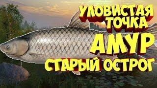 Русская Рыбалка 4 Старый острог Амур рр4 Алексей Майоров