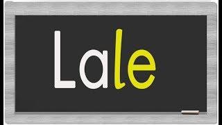 dik temel harfler e l a sesleri ile okuma etkinliği Ela Lale el ele