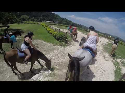 Horse Back Riding in Jamaica