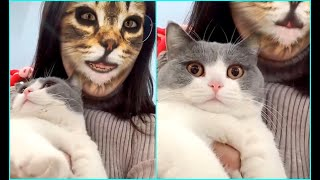 🤣Cats Scared Of Cat Mask Filter -  Cat Reaction To Mask Filter #1