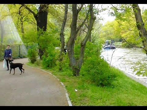 German Beauty. Tiergarten Park. Berlin.