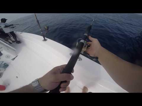 24-9-2016 Fishing trip for Mahi Mahi in Arabian Sea part 13