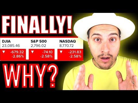 The Stock Market Finally Fell! Why!?