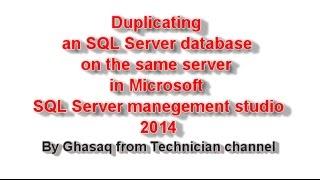 Duplicating an SQL Server database on the same server in Microsoft SQL Server management studio 2014