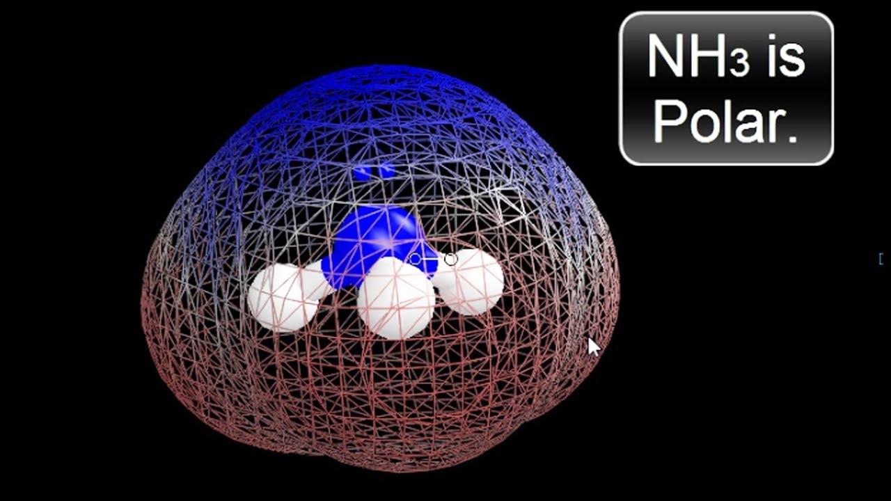Is Nh3 Polar Or Nonpolar Ammonia Youtube
