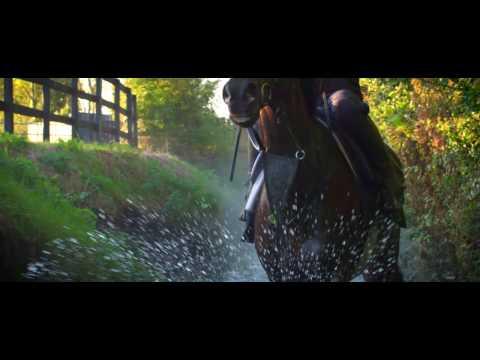 Gordon Elliott Racing Promo Video