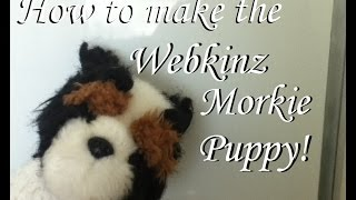How to Make a Morkie Puppy!