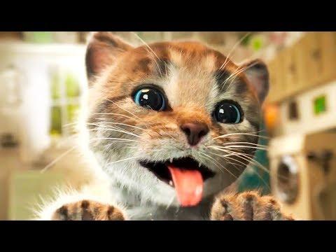 ПРИКЛЮЧЕНИЕ МАЛЕНЬКОГО КОТЕНКА СПАСЕНИЕ КОТЕНОЧКА мультик про кота или кошку питомец для детей #КИД