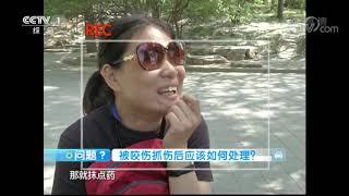 《生活提示》 20190919 狂犬病可怕 但可预防| CCTV