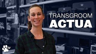 Black Friday promotion   Transgroom Actua - TRANSGROOM