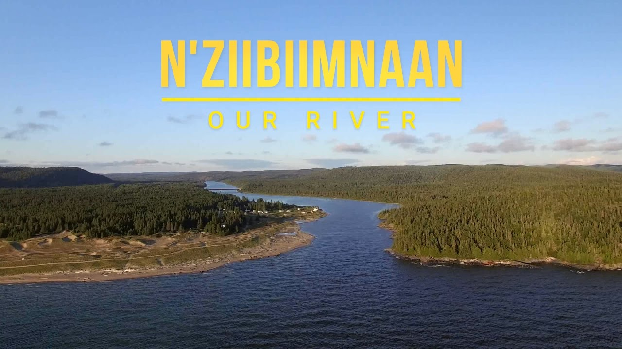 N'ziibiimnaan - Our River [Film] image