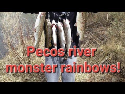 Pecos River Fishing DanDiesel's Fish Mish