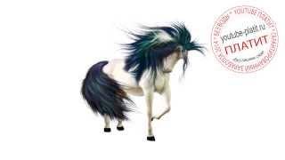 Как нарисовать лошадь для начинающих  Как научиться рисовать лошадь(как нарисовать лошадь, как нарисовать лошадь поэтапно, как нарисовать карандашом лошадь, как нарисовать..., 2014-08-07T05:38:37.000Z)