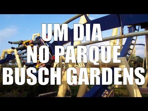 Um dia no parque Busch Gardens Tampa