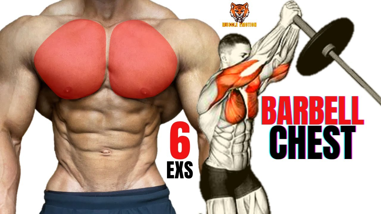 5 BEST CHEST EXERCISES WITH BARBELL / MUSCULATION PECS AVEC BARRE
