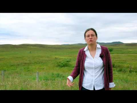 Crofting and the Clearances commissioned by The Golspie Inn Hotel 5 minutes from Dunrobin Castle