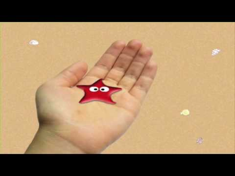 I Found A Tiny Starfish - Animation