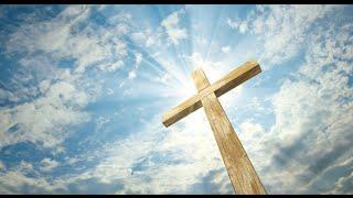 The Cross - The Tav