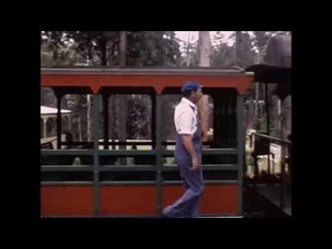 Reelbox Video & Photo - Super 8 Film Scan 3 (1080p)