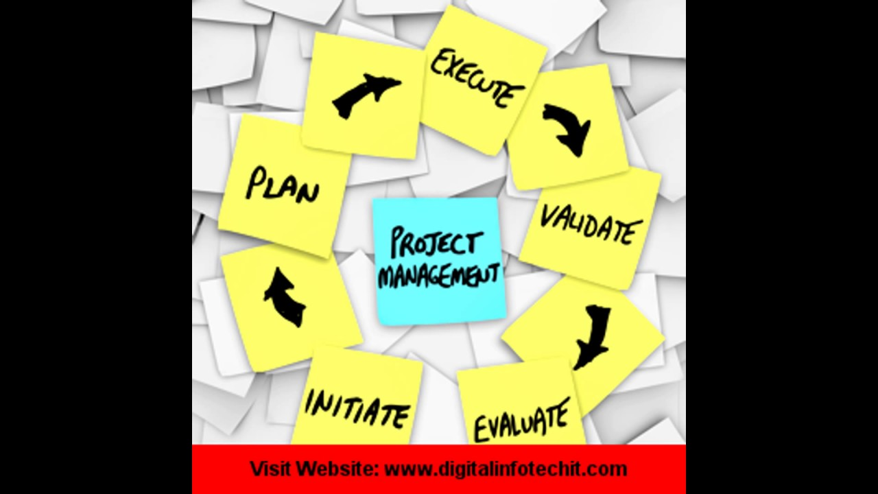 WHO IS A PROJECT MANAGER???