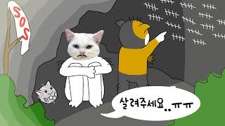 고양이가 무인도에 혼자 갇힌다면? | 고양이산책