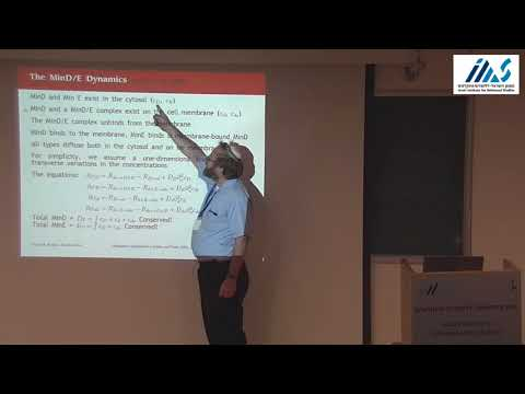 "D. Kessler: ""Nonlinear self-adapting wave patterns"""