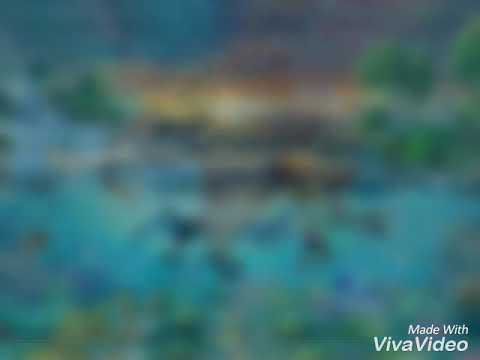 3D Fotooboy ,3D Freska (2) Bakıda sifarişlə