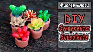 Миниатюра: Суккуленты в горшочках ❤ Мастер-класс ❤ Полимерная глина ❤ Miniature Succulents Plants