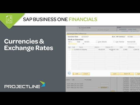 Guide to Using Currencies & Exchange Rates in SAP Business One