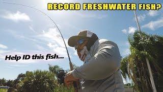 Rare 190lb Exotic Freshwater Fish | Monster Mike Fishing
