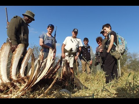 Mathikithi Wilderness Trail - Kruger National Park