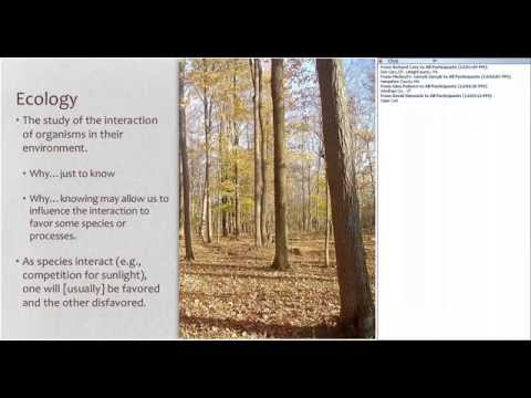 An Introduction to Northeastern Forest Ecology