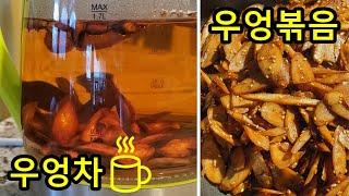 (eng/kor sub) Korean Burdock Tea   burdock boiled in soy sauce   우엉차 만들기   초간단 우엉볶음