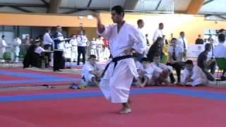KATA - GOJUSHIHO-SHO- CAMPIONATUL MONDIAL KARATE SKDUN - FRANTA 2010 -SCHEIN ALEXANDRU
