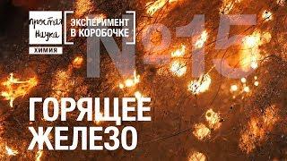 №15 - ГОРЯЩЕЕ ЖЕЛЕЗО